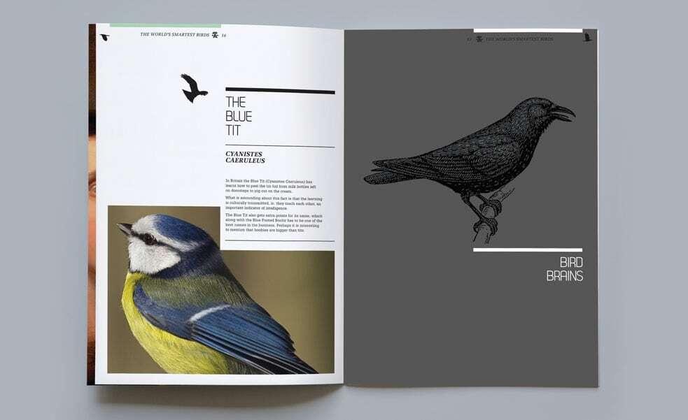 design agency sydney melbourne print design