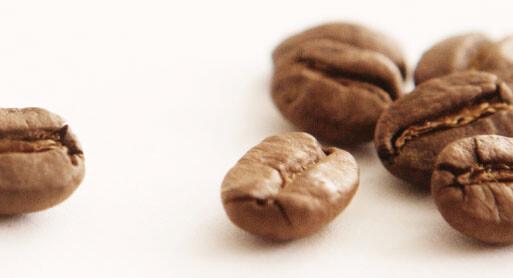 baycoffee client testimonial